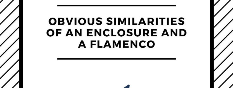 Engineering Blogs, Obvious Similarities of an Enclosure and a Flamenco